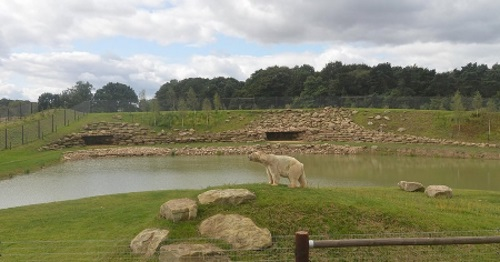 Yorkshire Wildlife Park Image